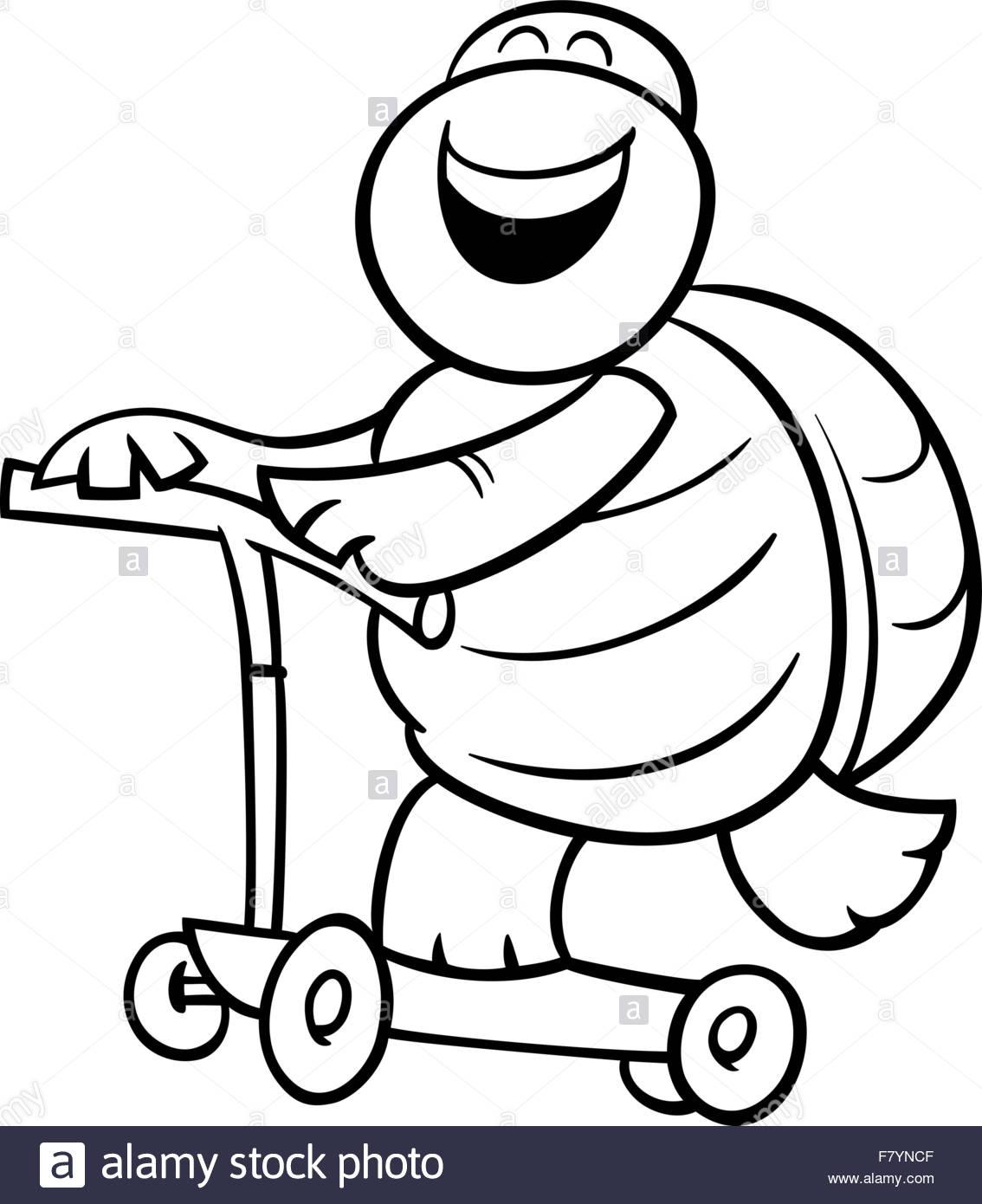 malvorlage schildkröte  ausmalbilder fur euch