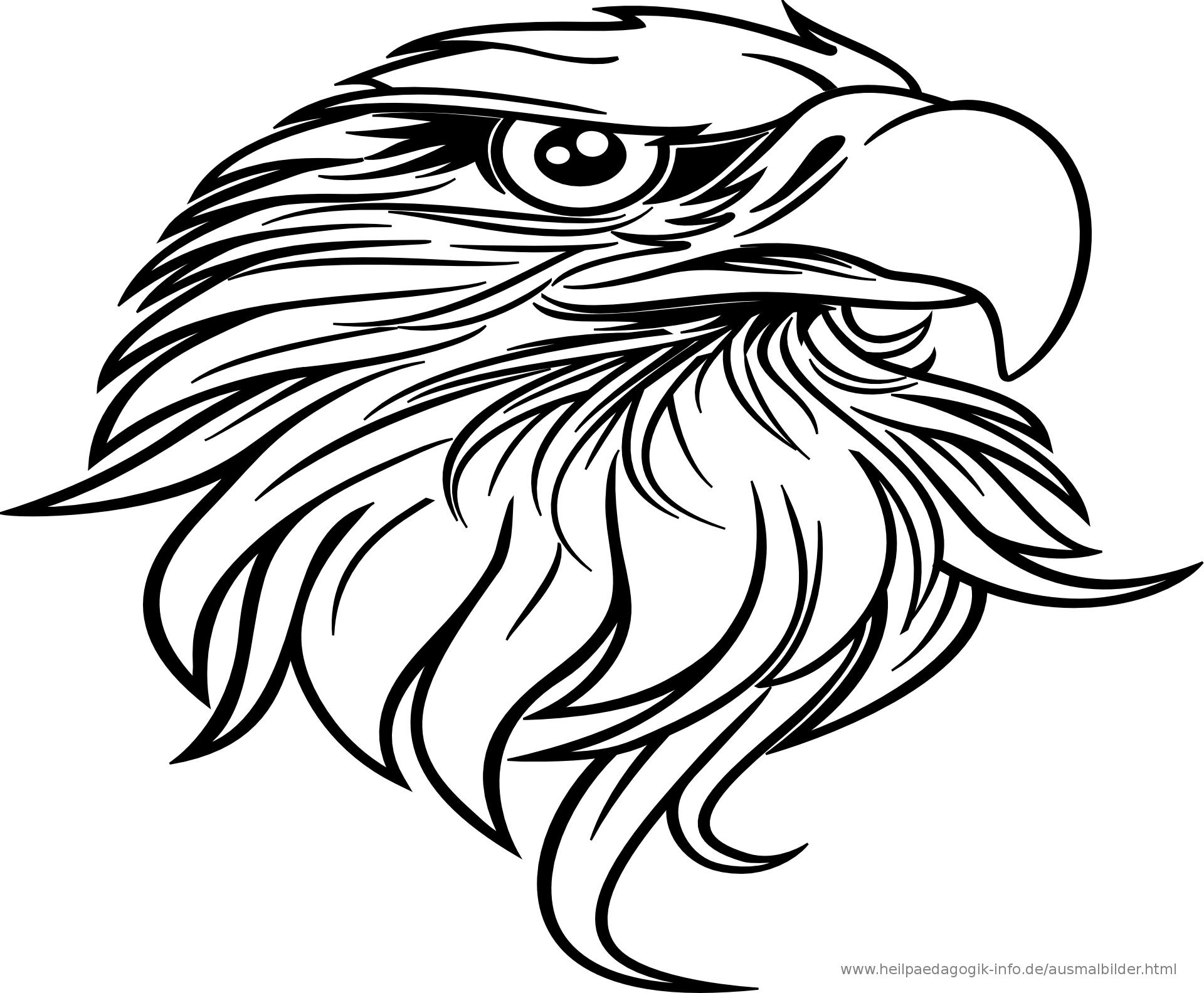 malvorlagen vögel  ausmalbilder fur euch  malvorlagen
