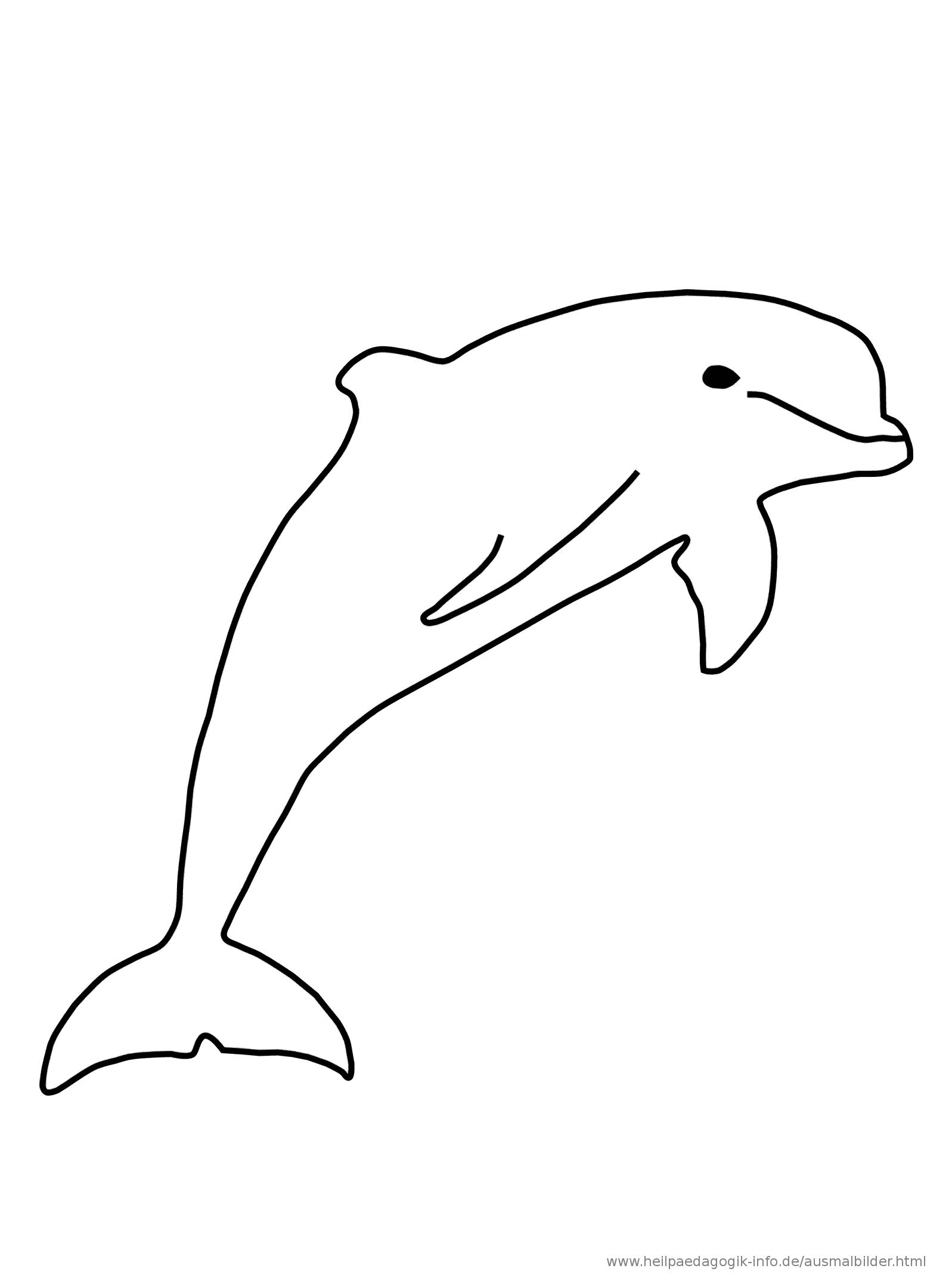 regenbogenfisch malvorlage  ausmalbilder fur euch